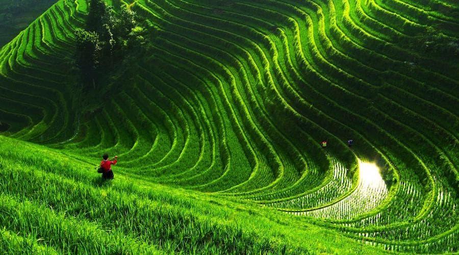 rivière économie verte